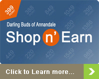 Shop n' Earn